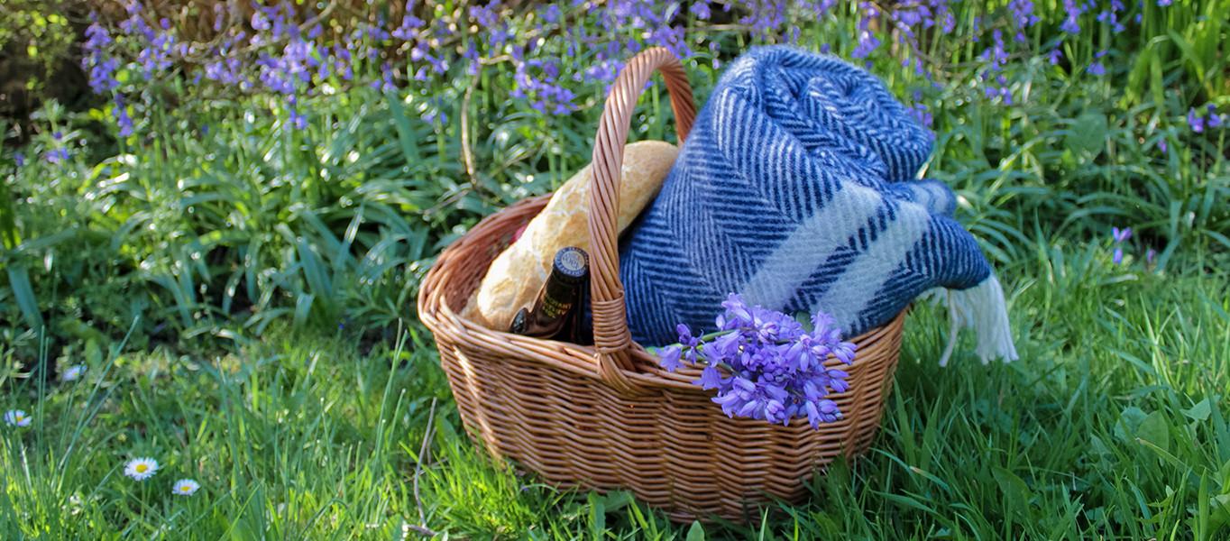 Picnic Lookbook Blue